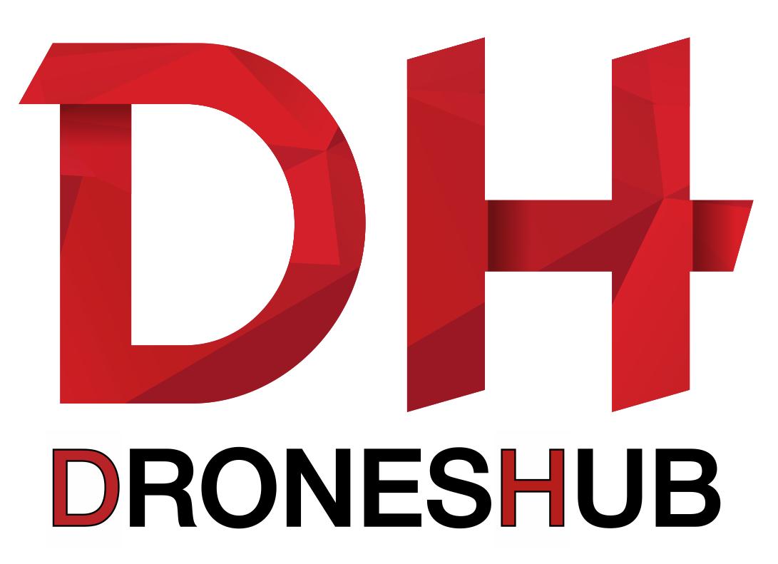 Logo_DH-2